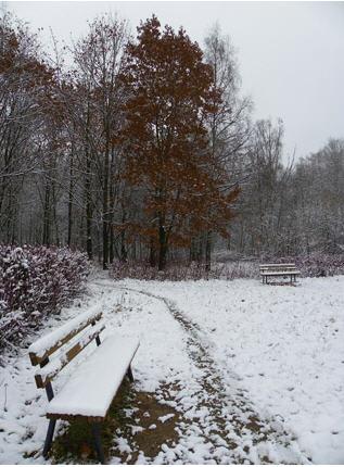 vstre4a zimi